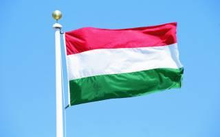 У венгерского премьера назвали украинское образование «полуфашистским»