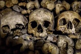 Журналисты рассказали как благодаря Instagram процветает торговля на костях