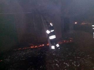 Под Киевом героически спасли сотни поросят