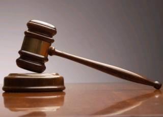 Китаец купил на аукционе почтового голубя за 1,252 миллиона евро