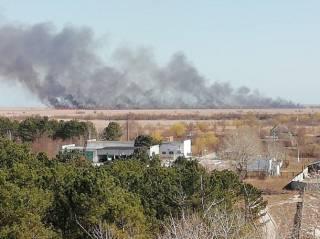 На Одесщине бушует грандиозный пожар. К борьбе с огнем подключили даже авиацию