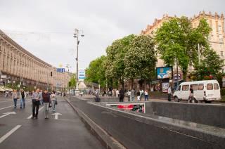 Столичные чиновники утверждают, что киевляне сами попросили заменить каштаны на Крещатике на платаны