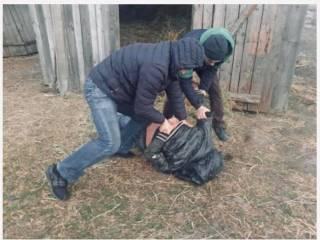 В Хмельницкой области педофил изнасиловал 11-летнюю девочку, заманив ее к себе домой