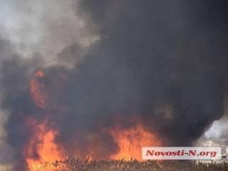 В Николаеве бушевал сильнейший в этом году пожар