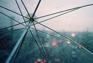 Со следующей недели в Украину вернутся дожди