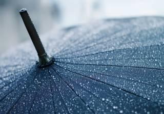 В Украину пришли затяжные дожди: что говорят синоптики
