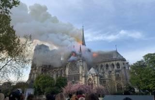 Собор Парижской Богоматери. 10 фактов о легендарном здании