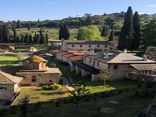 Игумен афонского монастыря выразил поддержку Митрополиту Онуфрию