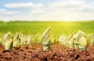 Семь схем использования госземель агрокомпаниями в условиях «теневого» рынка земли