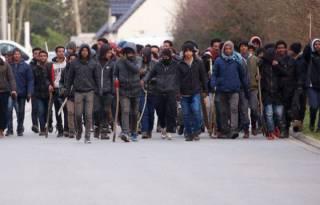 Грандиозная бойня ромов на Закарпатье. Появилось видео