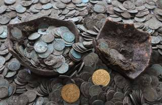 Стадо кабанов раскопало древний клад в Словакии