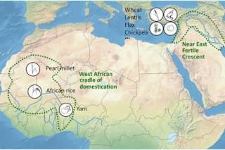Ученые установили, где зародилась человеческая цивилизация