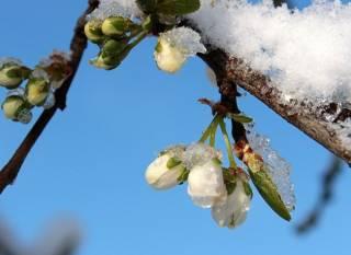 Украину накроет мощный циклон – ожидается снег