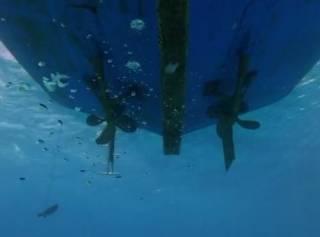 Молодого украинского жениха изрубило на куски в Карибском море