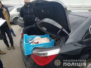 На Киевщине грабители с игрушечным автоматом отобрали у фермера... двух индеек