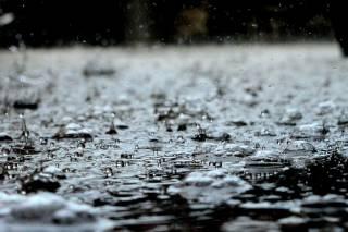 Синоптики рассказали, где в пятницу будут идти дожди