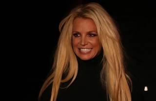Угодившая в психушку певица Бритни Спирс может навсегда уйти со сцены