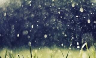 До конца месяца Украину будут поливать дожди