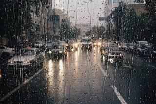 В Киеве надолго зарядят дожди