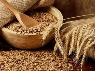 Варианты поиска продавцов пшеницы