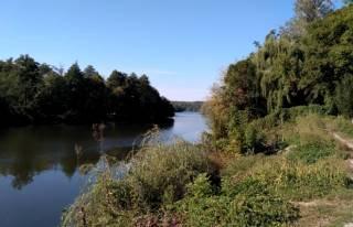 Умань и Белая Церковь остались без воды из-за разлива химикатов в реку Рось