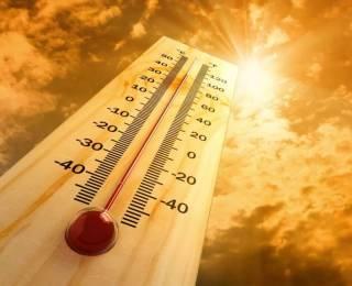 Спастись от солнца. 10 способов пережить жару