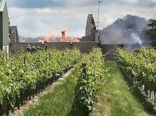 Во Франции сгорели колоссальные запасы коньяка