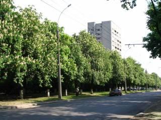 Под крики и ругань: в Харькове «обратно переименовали» проспект маршала Георгия Жукова