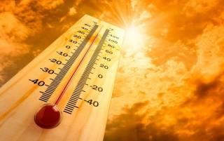 Адская жара в Европе до конца недели может убить тысячи людей