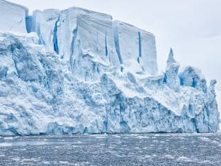 В Антарктиде откопали огромного монстра, жившего около 70 миллионов лет назад