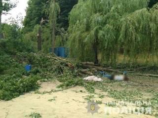 На Харьковщине дерево рухнуло прямо на людей ‒ есть жертвы