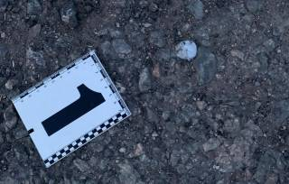 Взрыв в Днепропетровской области: пострадали дети