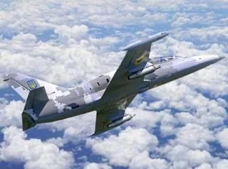 На Харьковщине упал самолет Л-39: стала известна судьба пилота