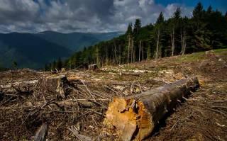 На грани катастрофы: три области Украины под угрозой экологического бедствия