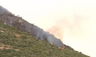 В Греции из-за сильного пожара эвакуировали целый остров