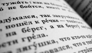 Оставьте в покое русский язык! Да и «матюки» тоже…