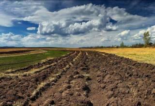 Стало известно, какими темпами сокращается население украинского села