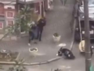 Драка двух курьеров в Киеве попала на видео