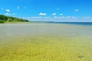 Крупнейшее озеро Украины стремительно мельчает. Экологи рассказали почему