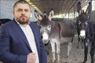 Ослиная афера: как кандидат от Тимошенко Сергей Коровченко скормил жителям Черниговщины тонны колбасы из несъедобной ослятины