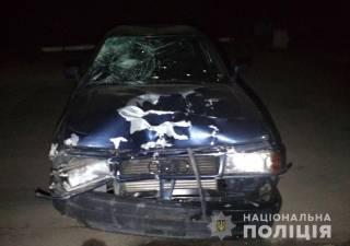 В Запорожской области водитель под алкоголем и наркотиками насмерть сбил двух велосипедистов