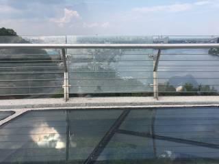 Стеклянный мост Кличко продолжает трескаться