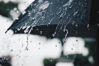 Киевлян предупредили о дождливых и холодных выходных