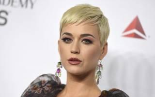 Известная американская певица «попала» на миллионы долларов из-за плагиата всего одной песни