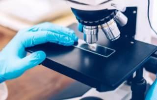 Ученые из США назвали «самую главную» причину онкологии