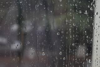 Стало известно, какой будет погода в Киеве на этой неделе