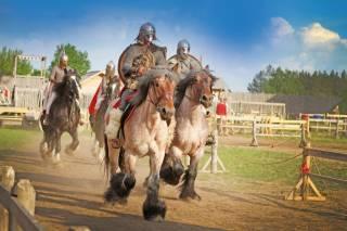 Массовые конные сражения пройдут под Киевом