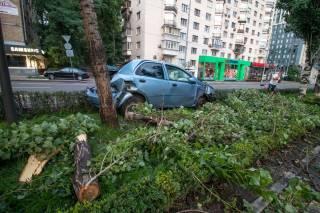 ДТП в Киеве: автомобиль буквально «прошил» аллею