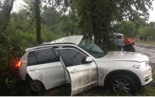 На Волыни в ДТП погиб депутат
