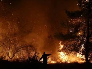 В Киеве и области объявлен чрезвычайный уровень пожарной опасности